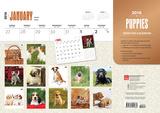 Puppies - 2016 Calendar Desk Pad Calendars