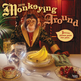 Monkeying Around - 2016 Calendar Calendars