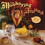 Monkeying Around - 2016 Calendar Calendarios