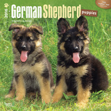 German Shepherd Puppies - 2016 Calendar Calendars
