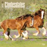 Clydesdales - 2016 Calendar Calendarios