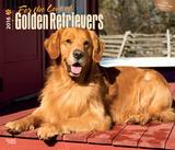 For the Love of Golden Retrievers - 2016 Calendar Calendars