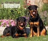 For the Love of Rottweilers - 2016 Calendar Calendars