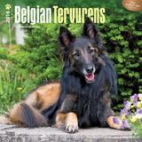 Belgian Tervurens - 2016 Calendar Calendars