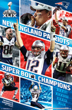 Super Bowl XLIX - Celebration Posters