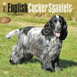 English Cocker Spaniels - 2016 Calendar Calendars