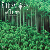 The Majesty of Trees - 2016 Calendar Calendars