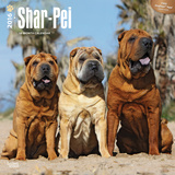 Shar-Pei - 2016 Calendar Calendars