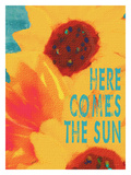 Here Comes The Sun Giclee Print by Lisa Weedn