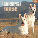 White German Shepherds - 2016 Calendar Calendars