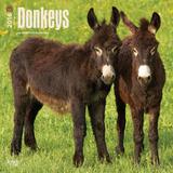 Donkeys - 2016 Calendar Calendars