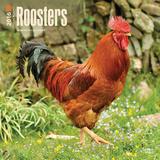 Roosters - 2016 Calendar Calendars