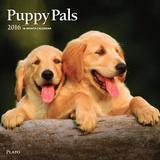 Puppy Pals - 2016 Calendar Calendars