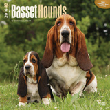 Basset Hounds - 2016 Calendar Calendars