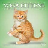 Yoga Kittens - 2016 Mini Wall Calendar Calendars