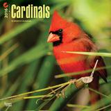 Cardinals - 2016 Calendar Calendriers