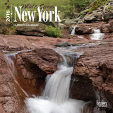 New York, Wild & Scenic - 2016 Mini Wall Calendar Calendars