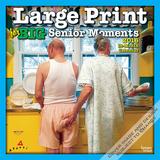 Large Print for Big Senior Moments - 2016 Calendar Calendars