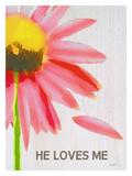 He Loves Me Giclee Print by Lisa Weedn