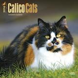 Calico Cats - 2016 Calendar Calendars