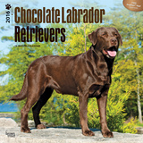 Chocolate Labrador Retrievers - 2016 Calendar Calendars