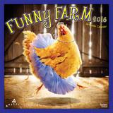 Funny Farm - 2016 Calendar Calendars