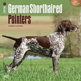 German Shorthaired Pointers - 2016 Calendar Calendars