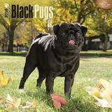 Black Pugs - 2016 Calendar Calendars