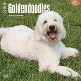 Goldendoodles - 2016 Calendar Calendars