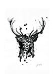 Inked Deer Giclee Print by James Grey