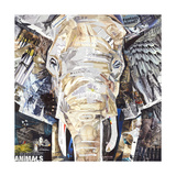 Elephants Gaze Giclee Print by James Grey