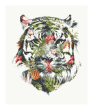 Tropical Tiger Reprodukcje autor Robert Farkas