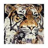 The Tiger Giclee Print by James Grey