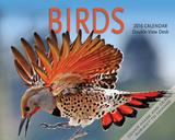 Birds - 2016 Easel Calendar Calendars