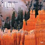 Utah, Wild & Scenic - 2016 Calendar Calendars