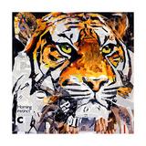 Hello Tiger Premium Giclee Print by James Grey