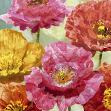 Playful Poppies II Print by Tania Bello