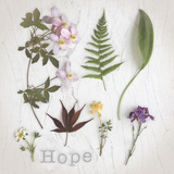 Nature Hope Posters by Bill Philip
