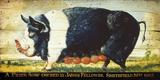 Prize Black Sow Giclee Print by Sean Aherne