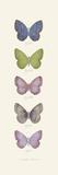 Jardin des Papillons II Pôsters por Maria Mendez
