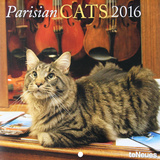 Paris & Cats - 2016 Mini Calendar Calendars