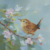 Woodland Birds IV Prints by Sarah Simpson
