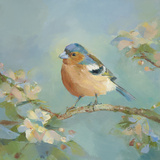 Woodland Birds II Prints by Sarah Simpson