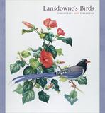 Lansdownes Birds - 2016 Calendar Calendars