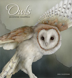 Jeannine Chappell Owls - 2016 Calendar Calendars