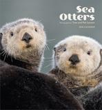 Sea Otters - 2016 Calendar Calendriers