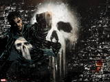 Marvel Extreme Style Guide: Punisher Wall Decal