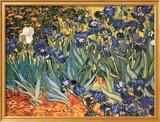 Schwertlilien Kunstdruck von Vincent van Gogh
