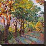 Lane of Oaks Stretched Canvas Print by Erin Hanson