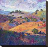 Hills of Paso Stretched Canvas Print by Erin Hanson